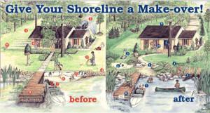 naturalize-shoreline